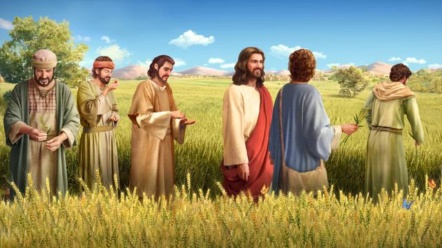 主耶穌, 真理, 道成肉身, 事奉, 拯救